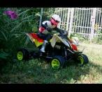 ATV Elektroquad 2WD RTR
